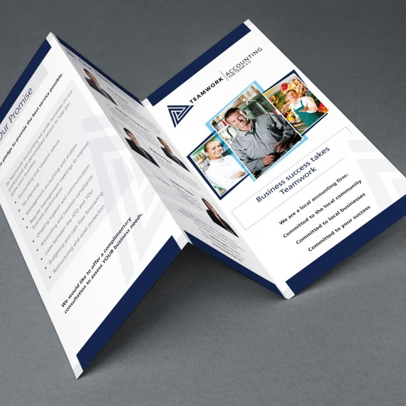 DL-brochures-TeamAcc-logo-mde-advertising-graphic-design-cms-websites-brochures-annual-reports-business-cards-branding-logo-design